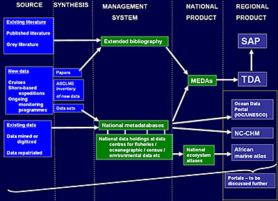 This figure describes the process of data and information synthesis for MEDA, TDA and SAP development.